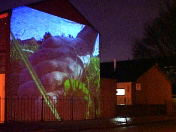image of giant foot projected on side of council house