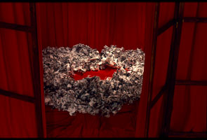 nest made from photocopied feathers, sat on red velvet cushion seen through opening in wooden screens