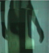 Image of a shadow of a dancer on voile screens